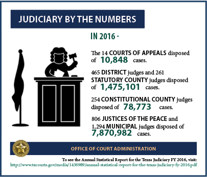 Judiciary by the Numbers (2017 Infographic)